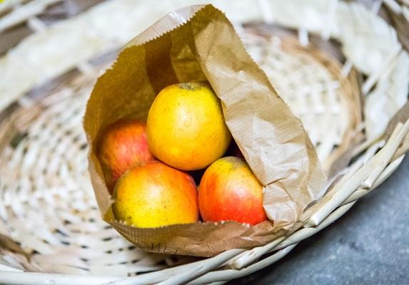 Ma come facevano a coltivare le mele prima della comparsa dei pesticidi?