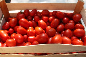 pomodori-proprieta-benefici
