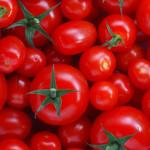 verdura-di-stagione-luglio