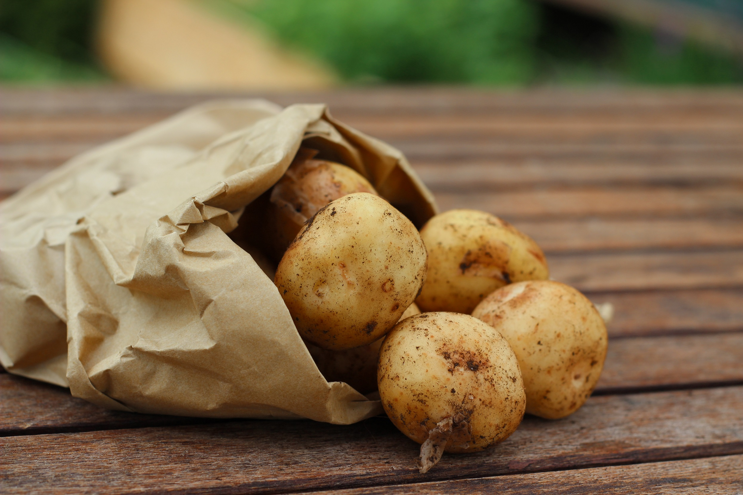 patate novelle maggio