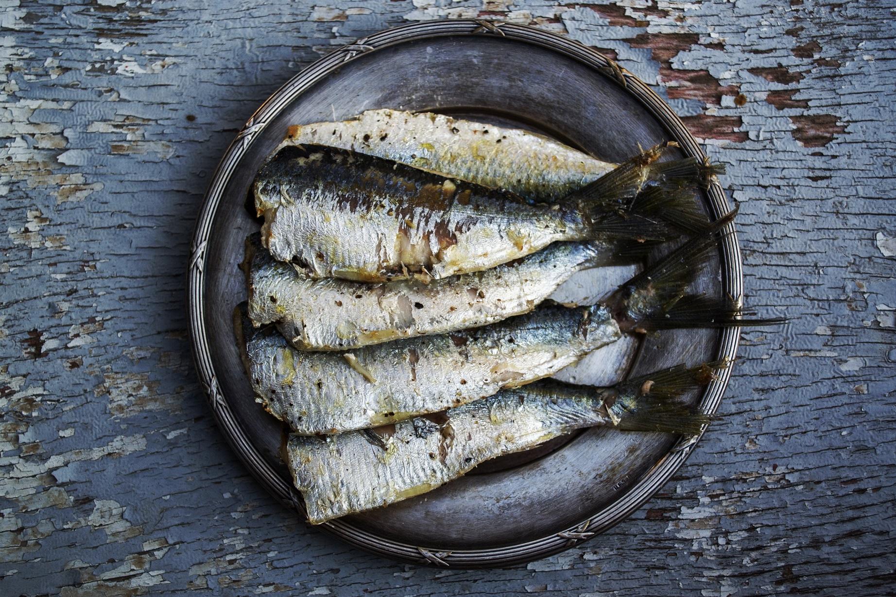 il pesce fa bene al cervello