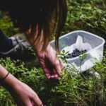 come fare foraging