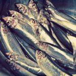 pesce povero