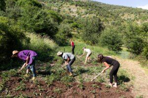 agroecologia in fattoria