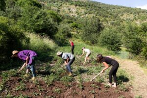 Agroecologia. Preservare il suolo