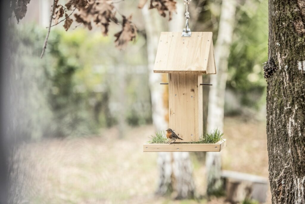 casetta per uccelli fai da te