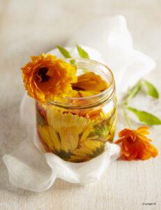 fiori calendula macerati